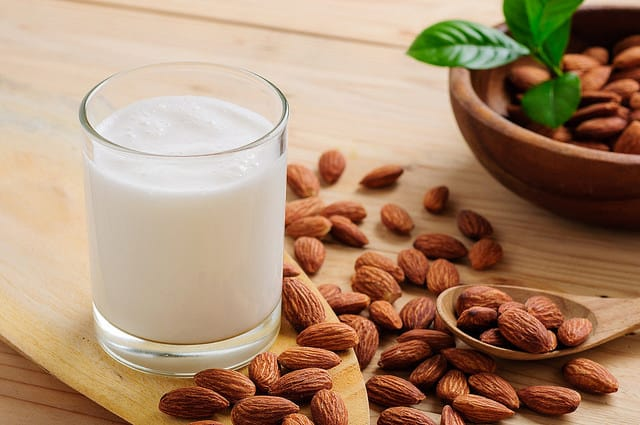 Can cats drink almond milk: Is it safe for them? - What ...