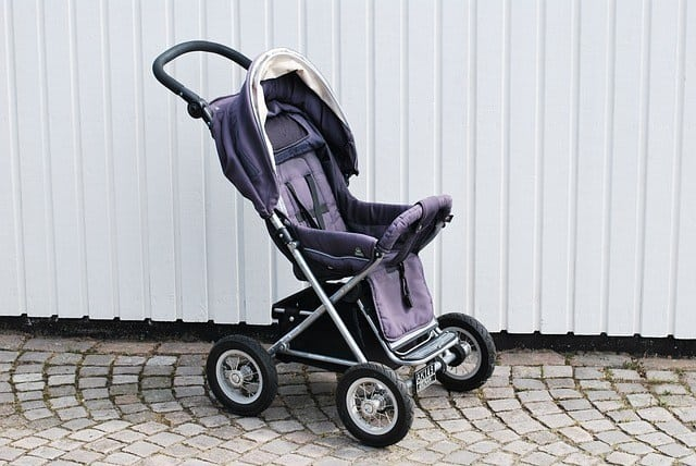 Stroller for cats